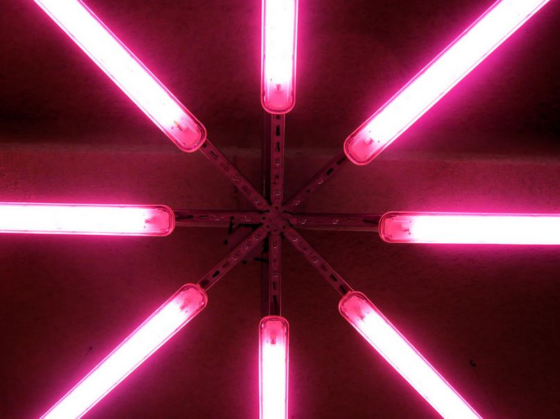 Negozio di abbigliamento - viola e rosa