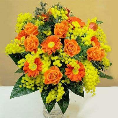 vaso con mimose per vetrina festa della donna
